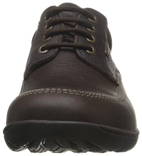 Scarpe uomo, colore Marrone , marca PANAMA JACK, modello Scarpe Uomo PANAMA JACK ALTOR GTX C2 Marrone Marrone