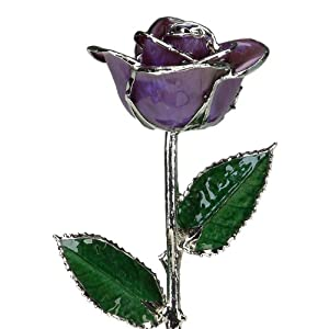 Deep Purple Laquered Platinum Long Stem Genuine Rose In Gift Box 24