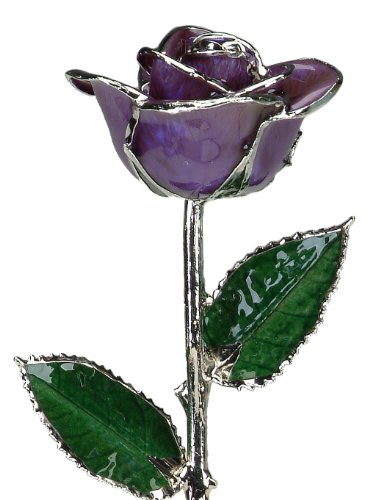 Deep Purple De Rose - Deep Purple Laquered Platinum Long Stem Genuine Rose In Gift Box
