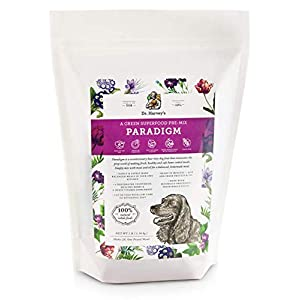 Dr. Harvey's Paradigm Green Superfood Dog Food, Human Grade Dehydrated Grain Free Base Mix for Dogs, Diabetic Low Carb Ketogenic Diet 13