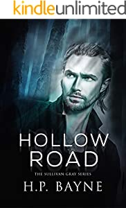 Hollow Road (The Sullivan Gray Book 5)