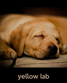 Buy marley and me book online at low prices in india marley and me yellow lab a gift journal for people who love dogs yellow lab puppy edition fandeluxe Image collections