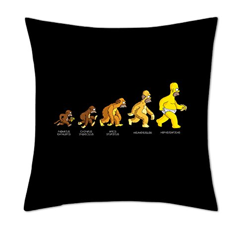 Ariella Kingh Homer Simpson 'Homer Evolution' Cushion Coverhttps://amzn.to/2KVPSFN