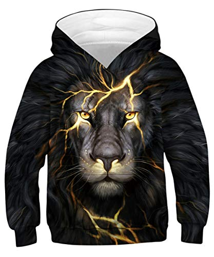 GLUDEAR Teen Boys Girls Novelty Animal Galaxy Hoodies Sweatshirts Pullover,Crack Lion,13-15 Years