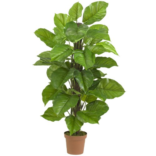 (Nearly Natural 6583 Large Leaf Philodendron Decorative Silk Plant, 52-Inch, Green )