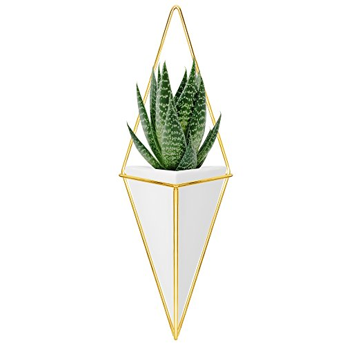 Nellam Ceramic Planter - Modern Geometric Hanging Wall Pot with Brass Frame – Large Mounted Decorative Vase & Container for Indoor Plants & Succulents - Potter for Flower, Herbs, Vegetable Planting - Glazed Pottery Cover