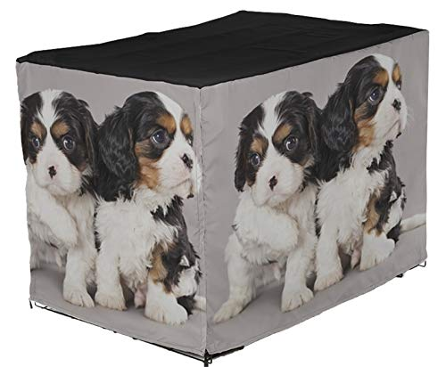 MSD Premium Dog Crate Cover Water Resistant Fabric Pet Cage Cover, Machine Washable, Indoor Outdoor Pet Kennel Cover for 24Lx18Wx20H Image ID: 12195227 Litter of Cavalier King Charles Spaniel Puppies