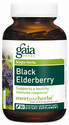 Gaia Herbs baies de sureau noir, 30 liquides Phyto-Capsules (pack de 2)