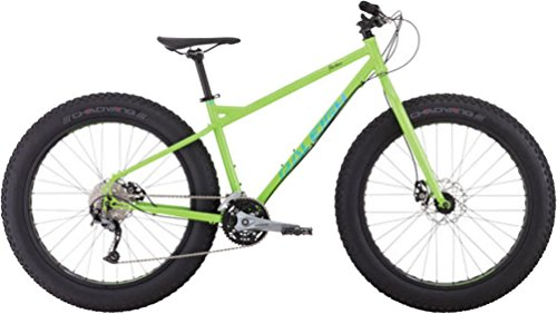 Raleigh Bikes Pardner Fat Bike, Green, 17″/Medium For Sale