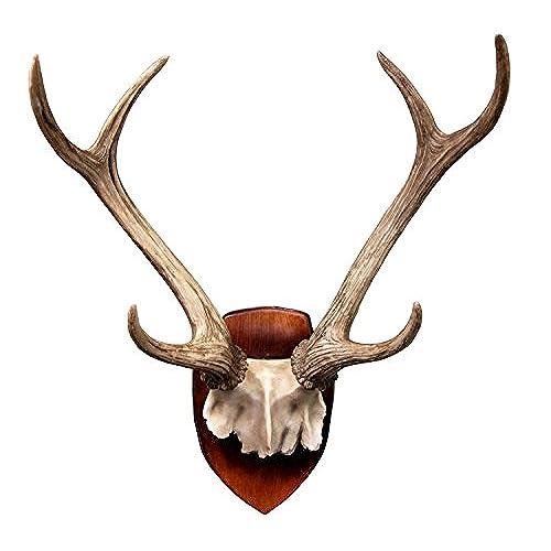 Rustic Hunter Deer 6 Point Buck Partial Skull Antlers Wall Mounted Plaque  Trophy Decor Figurine