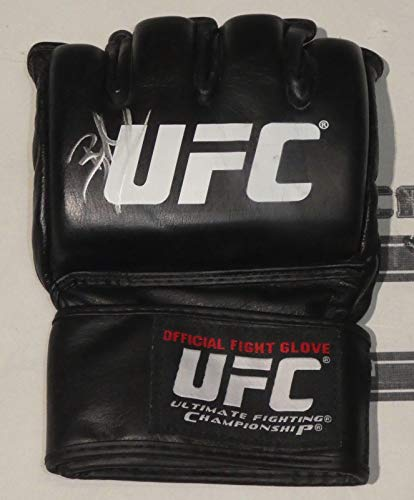 brock lesnar wwe gloves