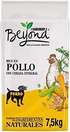 Purina Beyond Pienso Natural para Perro Adulto Pollo y Cebada ...