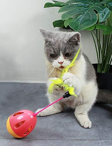 NVTED 6 PCS Cat Toys Assortments, Interactive Kitten Toys Feather Teaser and Exerciser Balls Tumbler for Cat, Kitty, Kitten 6