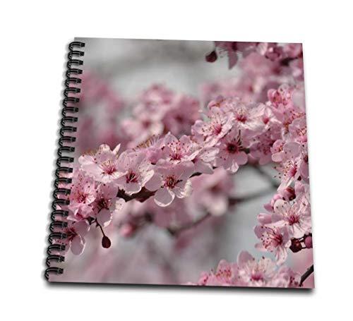 PS花–Pretty桜花–Drawing Book 8 by 8` db_192734_1