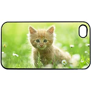Cute Kitten Apple iPhone 5 or 5s PLASTIC cell phone Case / Cover Great Gift Idea