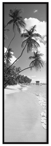 MCS 23146 Original Poster Frame with Strong Pressboard Backing, Black, 11-3/4 by 36-Inch