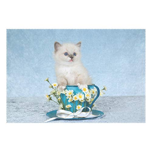 ALAZA Ragdoll Kitten Cat in Cup Placemat 1 Piece, Heat Resistant Washable Polyester Kitchen Table -