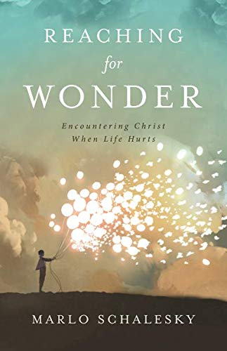 Where to find wrestling with wonder by marlo schalesky?