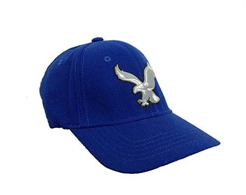 American Eagle Baseball Hat (American Eagle Outfitters Blue Big Eagle Logo Baseball Cap S/M)