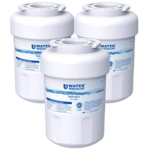 Waterspecialist NSF 53&42 Certified MWF Refrigerator Water Filter, Replacement for GE SmartWater MWFP , MWFA, GWF, HDX FMG-1, WFC1201, GSE25GSHECSS, PC75009, RWF1060, 197D6321P006 (Pack of 3) (Best Refrigerator Brands 2019)