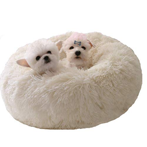 WonderKathy Modern Soft Plush Round Pet Bed for Cats or Small Dogs, Mini Medium Sized Dog Cat Bed Self Warming Autumn Winter Indoor Snooze Sleeping Cozy Kitty Teddy Kennel (M(23.6″Dx7.9″H), White)