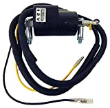 Dual Wire 12 volt Ignition Coil Compatible with