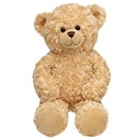Build a Bear Workshop, Happy Hugs Classic Teddy Bear, 16 in. from Build A Bear