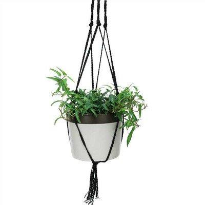 (Nature's Garden Round Pot Planter Size: Large, Color: Ivory )