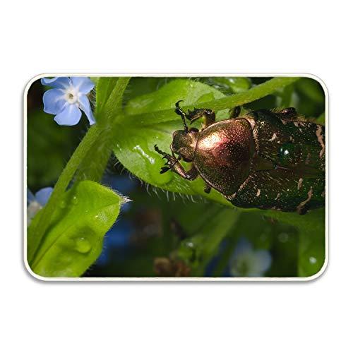 Niaocpwy Insect Indoor/Outdoor Doormat Non Slip Front Entrance Door Mat Rug