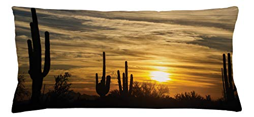 Ambesonne Arizona Throw Pillow Cushion Cover, Horizon Skyline in Scottsdale Area with Dramatic Clouds Above Cactus Plants, Decorative Accent Pillow Case, 36 X 16 Inches, Multicolor