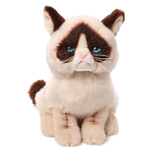 Gund Grumpy Cat Plush Stuffed Animal - Bug Eyed Cat