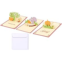 Set of 3 Happy Thanksgiving Greeting Cards - 3D Popup Cards with Thanksgiving Themes - Includes Envelopes, 4.75 x 4.75 Inches
