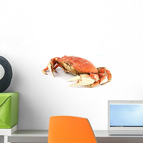 Wallmonkeys Dungeness Crab Wall Decal Peel and Stick Graphic WM31718 (18 in W x 12 in H)
