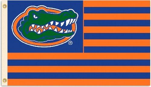 Gator Flag - NCAA Florida Gators Flag with Grommets, 3 x 5-Feet