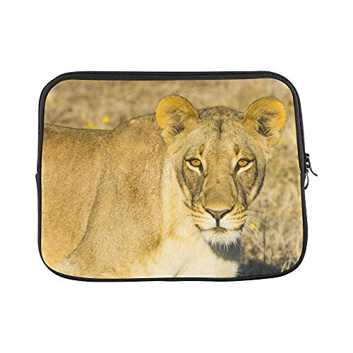(Design Custom Wildlife in Nxai Pan National Park Sleeve Soft Laptop Case Bag Pouch Skin for MacBook Air 11