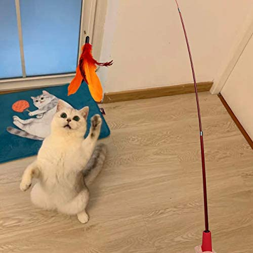 MeoHui 11PCS Retractable Cat Feather Toy Set, Interactive Cat Toys Wand with 2 Poles & 9 Attachments Worm Bird Feathers, Cat Feather Teaser Wand Toy for Kitten Cat Having Fun Exercise Playing 7