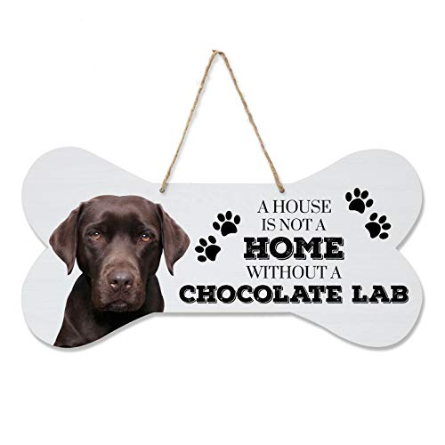 LifeSong Milestones Chocolate Labrador Retriever Gifts, for sale  Delivered anywhere in USA