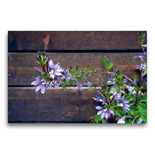 CALVENDO Toile de qualité supérieure - 75 x 50 cm - Motif Floral Avant Le Centre de visiteurs Kilpisjärvi - Tableau sur châssis - Impression sur Toile Nature