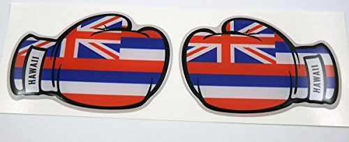 2 Boxing Gloves Hawaii Hawaiian Flag Domed Decal Emblem car stickers
