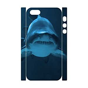diy 3D Bumper Plastic Customized Case Of Angel for iPhone 5,5S