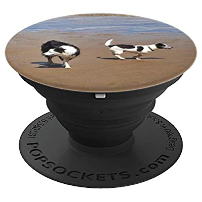 Border Collie and Jack Russell Terrier Dogs on the Beach - PopSockets Grip and Stand for Phones and Tablets