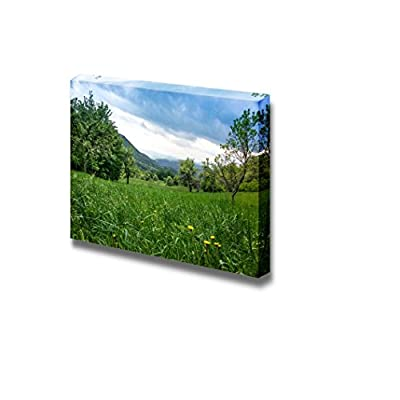 Canvas Prints Wall Art - Dandelions in Green Grass in Untouchable Nature Field | Modern Wall Decor/Home Decoration Stretched Gallery Canvas Wrap Giclee Print & Ready to Hang - 16