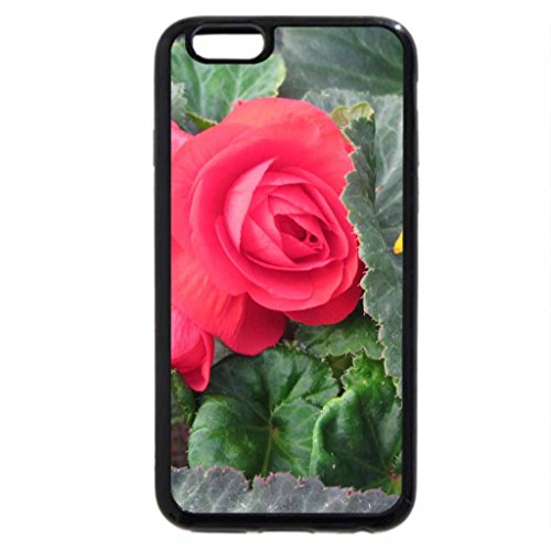 iPhone 6S / iPhone 6 Case (Black) Flowers 111 red and green