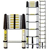 Telescopic Ladder 2.9m