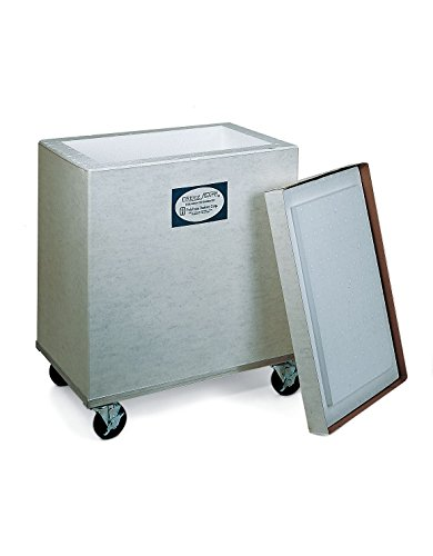 Dry Ice Storage Chest - ThermoSafe 305 Storage and Transport Chest Container with Fiberboard Case, 4.3 cu. ft. Volume, 27.875
