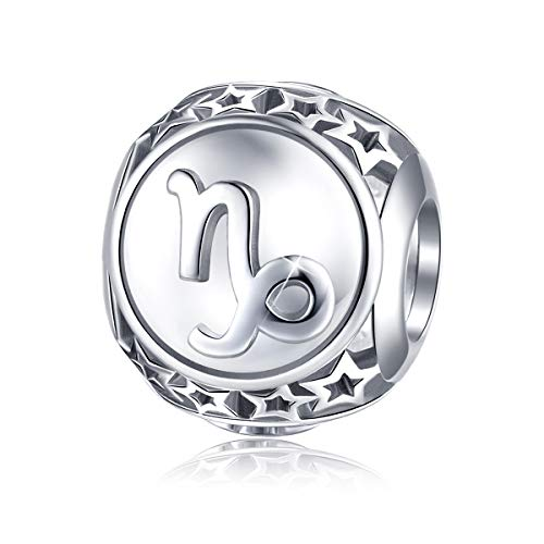 Capricorn Sign Zodiac - Capricorn Zodiac Sign Charm fit Pandora Charms Bracelet, 925 Sterling Silver Plated Platinum Bead Charm 12 Horoscope Constellation Charm for US European Bracelet and Necklace, Birthday Gifs BJ09023