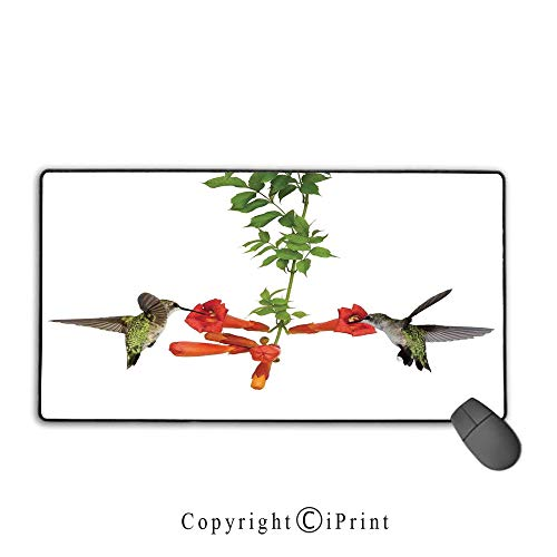 Vineyards Nectar - Waterproof Coated Mouse pad,Hummingbirds Decor,Two Hummingbirds Sip Nectar from a Trumpet Vine Blossoms Summertime,Premium Textured Fabric, Non-Slip Rubber Base Mouse pad with Lock,15.8
