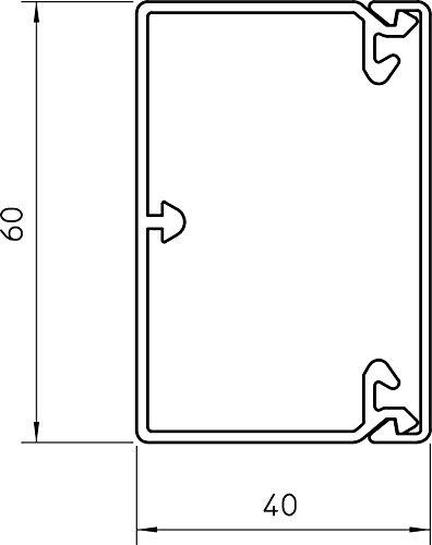 BETTERMANN Leitungsf/ührungskanal 40x60mm L2000mm rws
