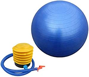 "Aleesh Queen Yoga Ball 25"" 65cm Exercise Gymnastic Fitness Pilates Balance w/Air Pump Blue For Gym Home Ground"