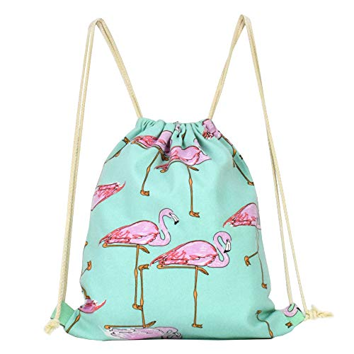 Lacheln Canvas Cartoon Flamingo Drawstring Backpack Travel Sackpack Bag Gym Outdoor Sports Portable Daypack for Girl Boys Woman Female